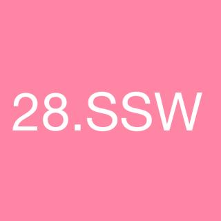 28. Schwangerschaftswoche - 28. SSW