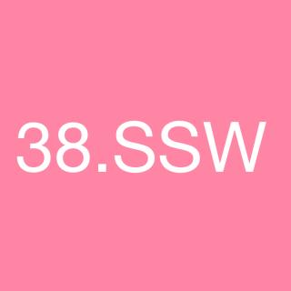 38. Schwangerschaftswoche - 38. SSW