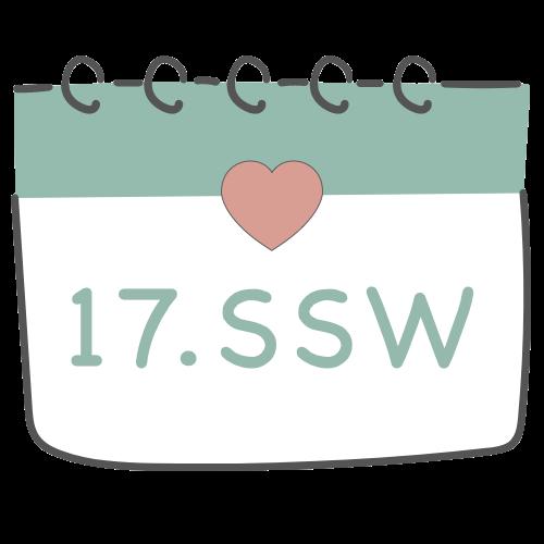 17. SSW - 17. Schwangerschaftswoche