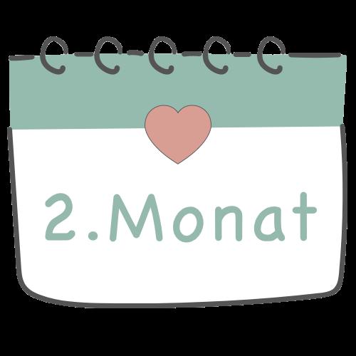 2. Schwangerschaftsmonat