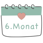 6. Schwangerschaftsmonat