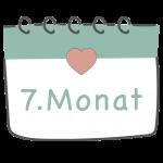 7. Schwangerschaftsmonat