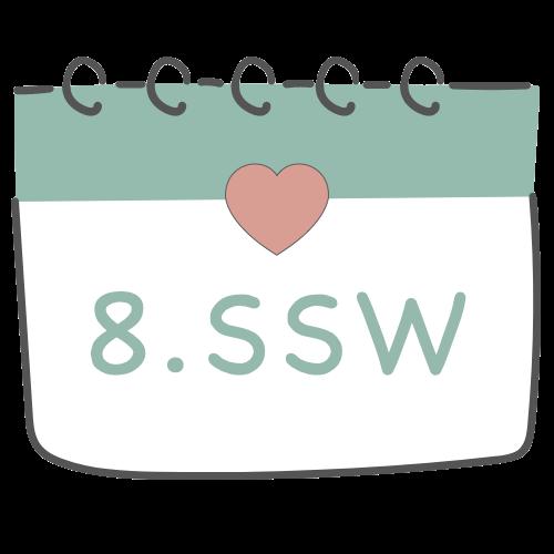 8. SSW - 8. Schwangerschaftswoche