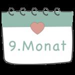 9. Schwangerschaftsmonat